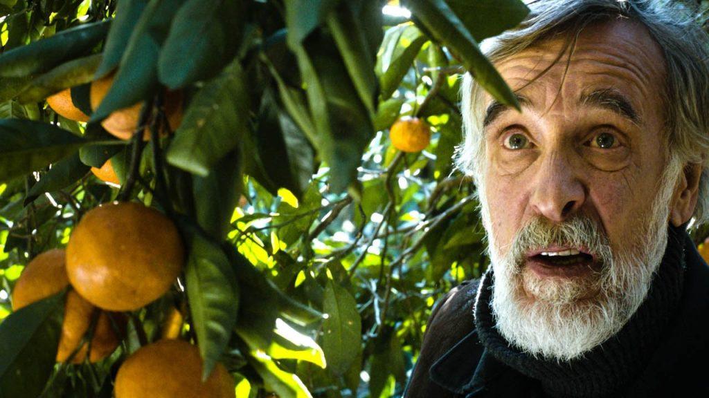 Electric Theatre Cinema - Tangerines